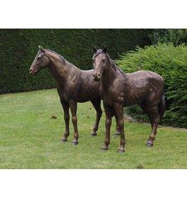 Bronze couple of horses