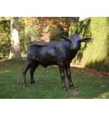 Bronze calf