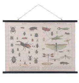 Eliassen Wandkarte Insekten 105x76cm