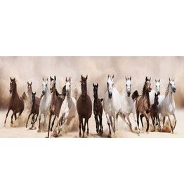 Eliassen Schilderij glas 60x160cm Horses
