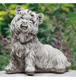 Dragonstone Yorkshire Terrier dog