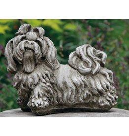 Dragonstone Shih-tzu dog