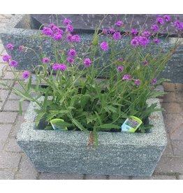 Trough granite 60cm