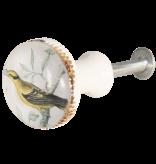Kastknop Vogel Geel