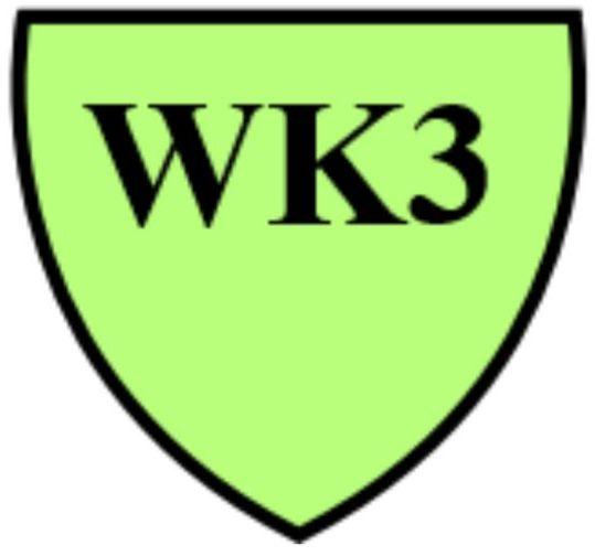 RVS-Shirt WK3