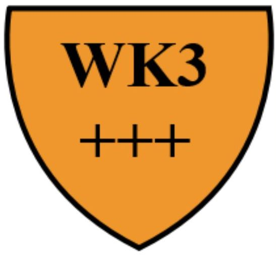 WK3+++