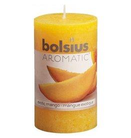 Bolsius Bolsius geurkaars rustiek 10x5.8cm ex.mango