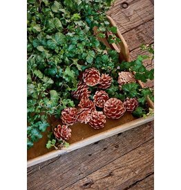 Riviera Maison Seasonal Pinecones copper