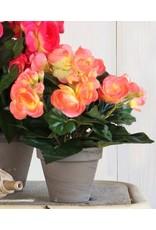 Begonia Zalmroze (kunstplant) Hoogte 25cm