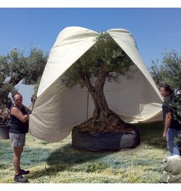 Beschermhoes XL - voor mediterrane planten 120x250cm