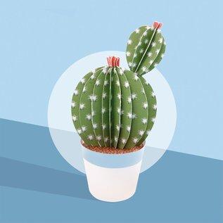Sophie et Martin Cactus