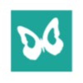 Woodex Pochoir papillon