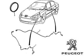 Peugeot 407 - 2e keer sensor in de fout