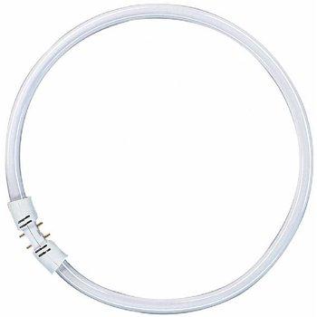 Osram FC 40W / 840 2GX13 (diameter 30 cm)
