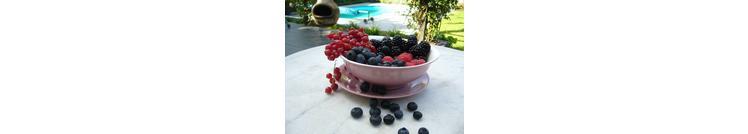 Fruit in je tuin