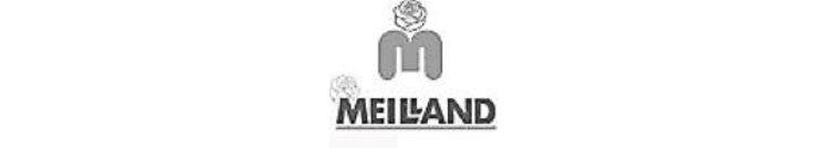 Meilland®