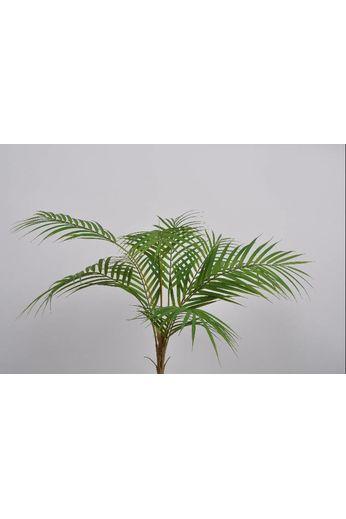 Silk-ka Plant bush palm phoenix green