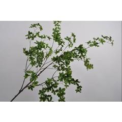 Silk-ka Bladtak groen 192 cm