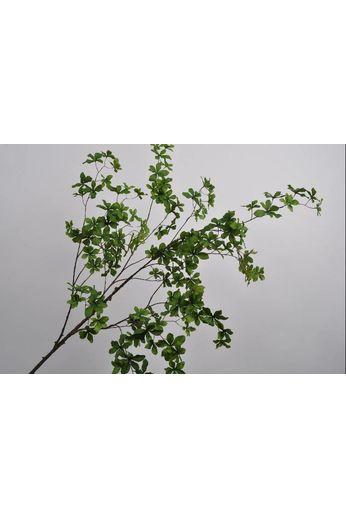 Silk-ka Leaf branch green