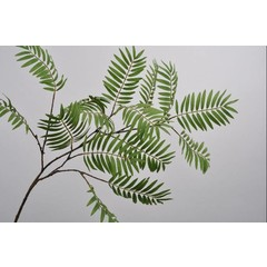 Silk-ka Leaf branch green