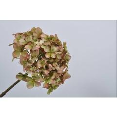 Silk-ka Hortensia steel groen/bruin 68 cm