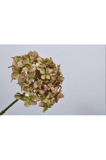 Silk-ka Hydrangea stem green / brown 68 cm
