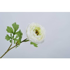 Silk-ka Ranunculus stalk white 58 cm