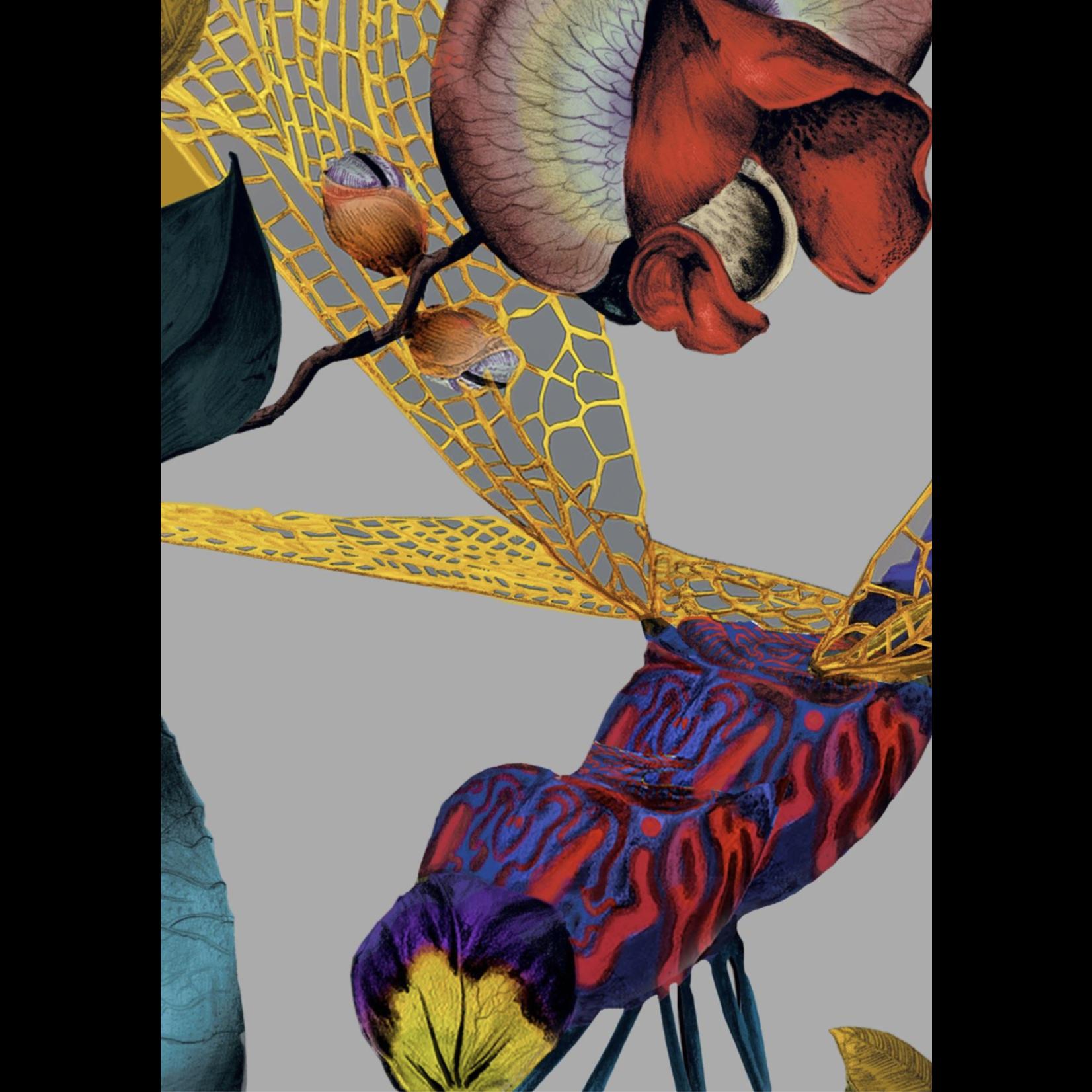 Kit Miles Biophillie | Haute couleur