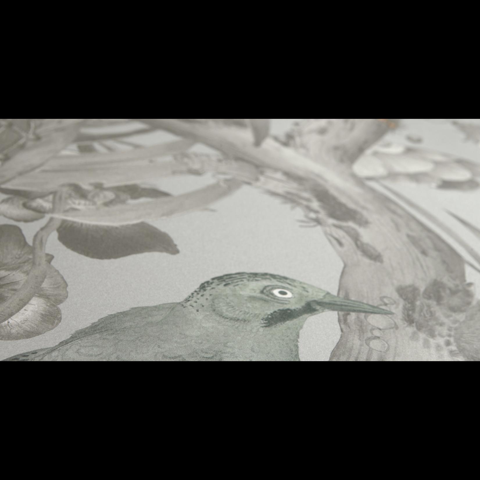 Kit Miles Botanica ecclésiastique | Pierre / Oeuf De Canard Bleu