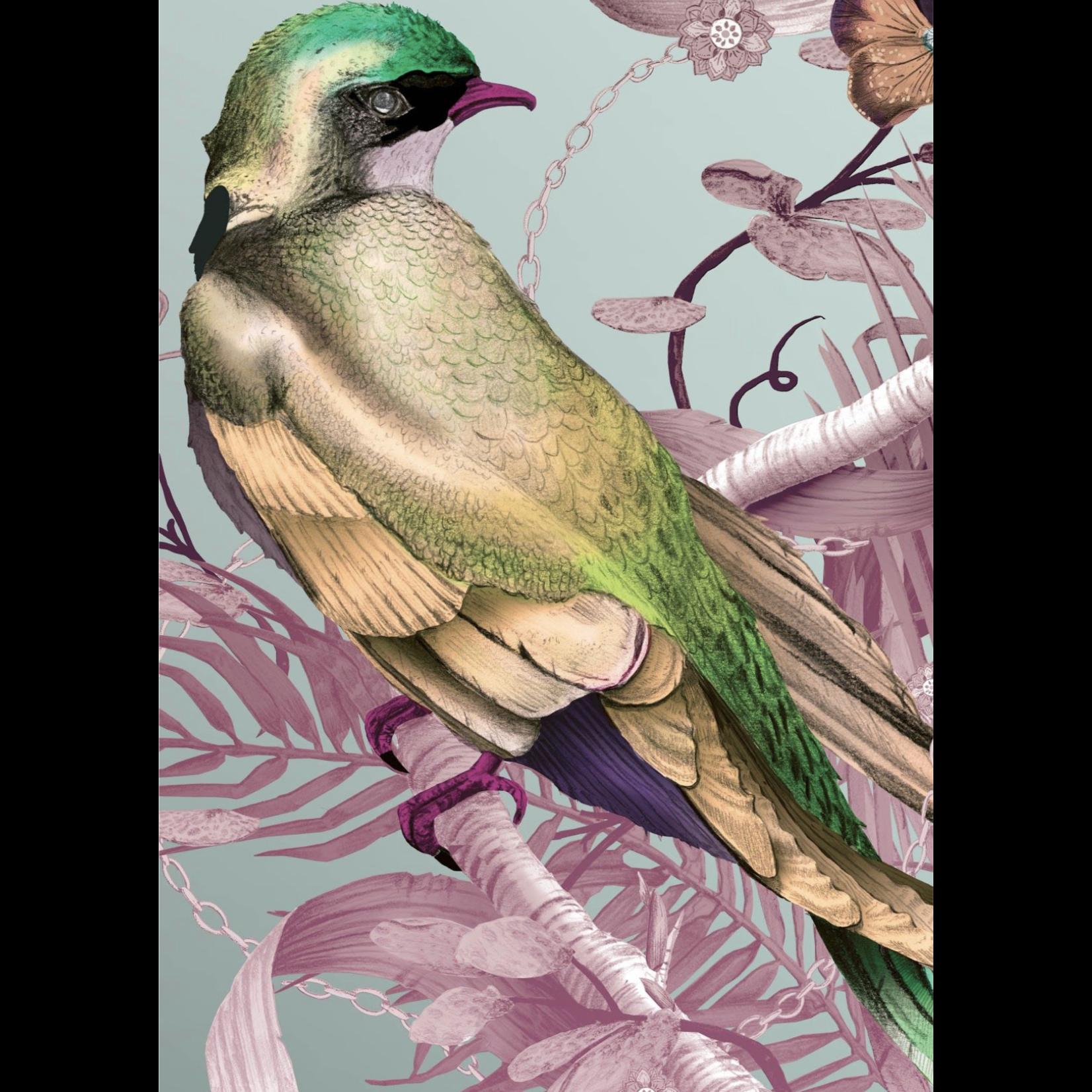 Kit Miles Bird in Chains   Roses et jaunes