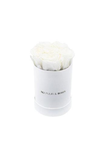 Mini - White Endless Roses - White Box