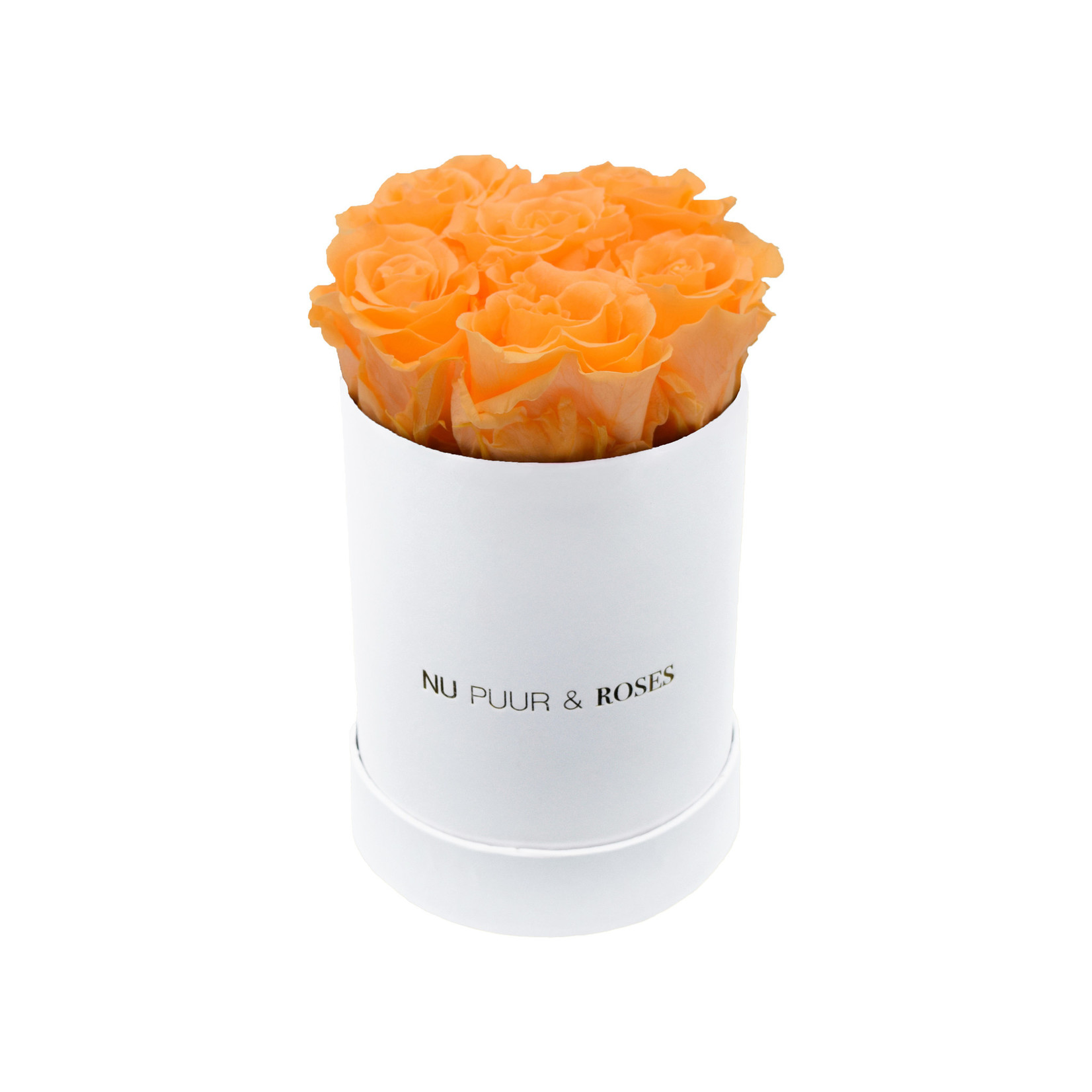 Mini - Peach Endless Roses - White Box