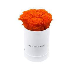 Mini - Orange Endless Roses - White Box