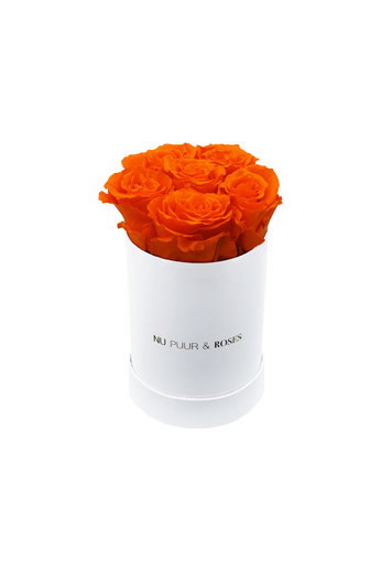 Mini - Roses Éternel Orange - Boîte Blanche