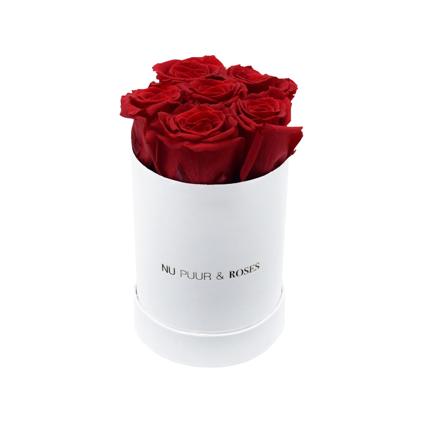 Mini - Roses Éternel Rouge - Boîte Blanche
