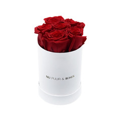 Mini - Red Endless Roses - White Box