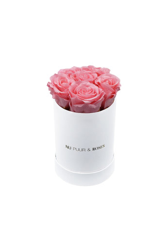 Mini - Pink Endless Roses - White Box