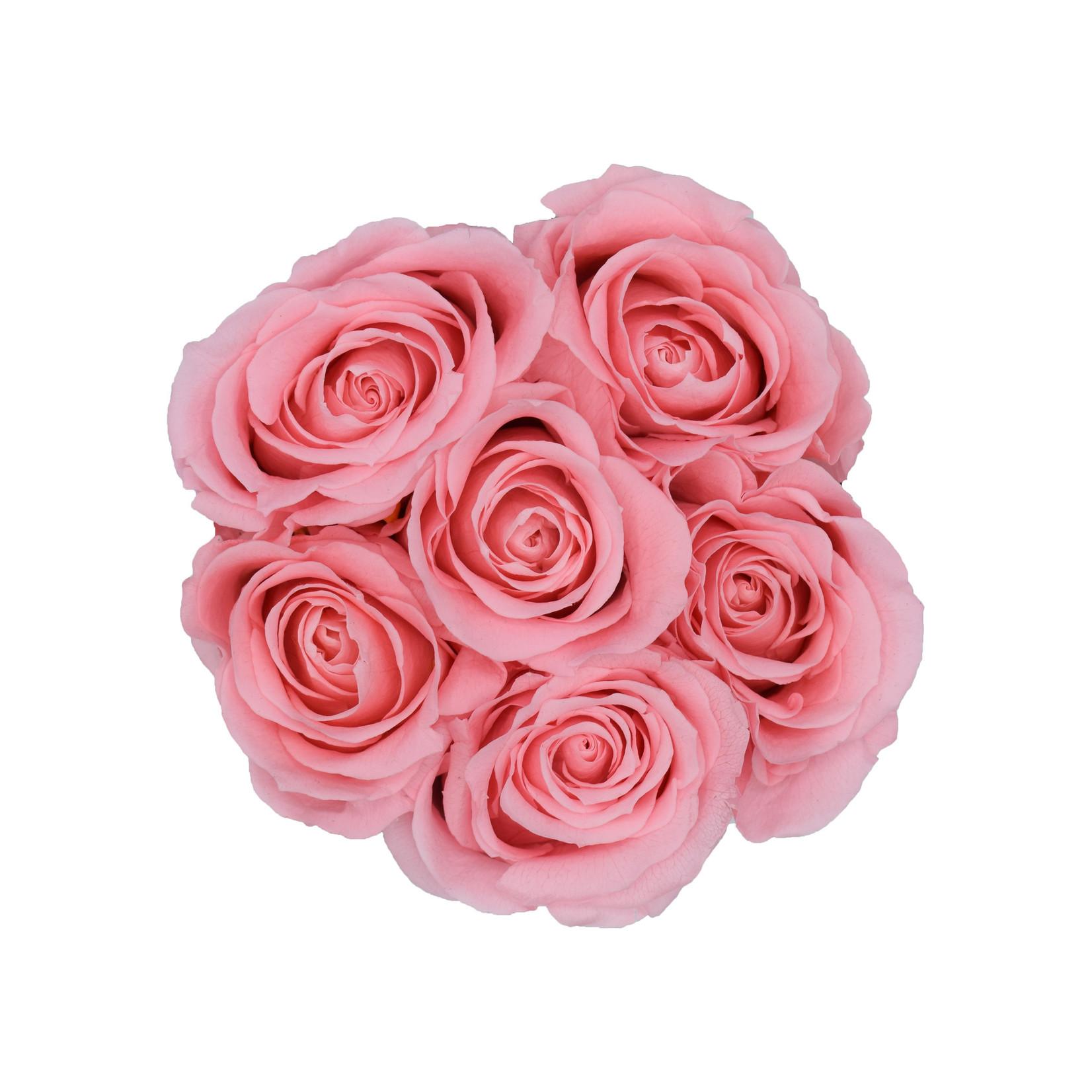 Mini - Pink Endless Roses - White Box