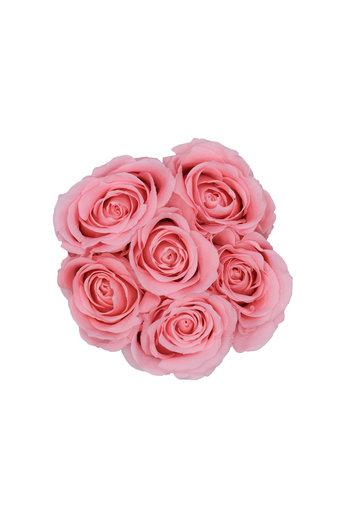 Mini - Roses Éternel Rose - Boîte Blanche