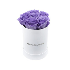 Mini - Lilac Endless Roses - White Box