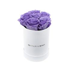 Mini - Roses Éternel Lilas - Boîte Blanche