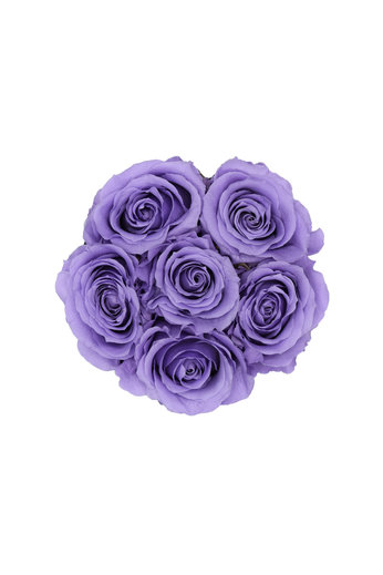 Mini - Lilac Endless Roses - White Box