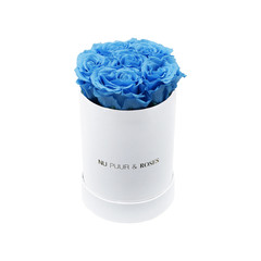 Mini - Blue Endless Roses - White Box