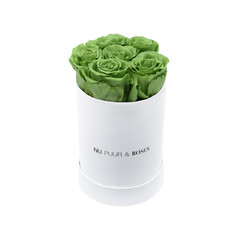 Mini - Green Endless Roses - White Box