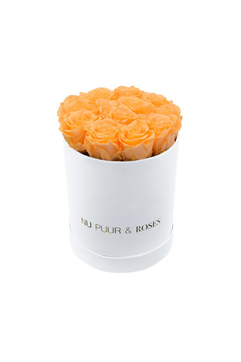 Small - Peach Endless Roses - White Box
