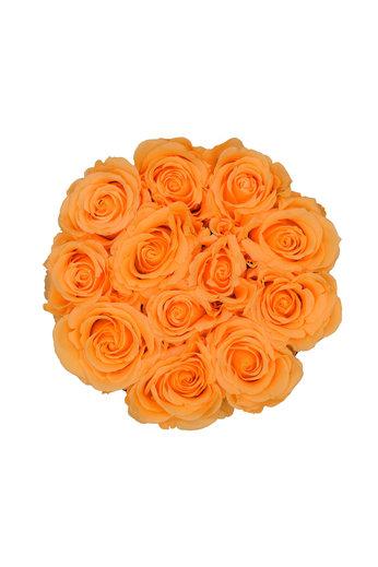 Small - Roses Éternel Pêche - Boîte Blanche