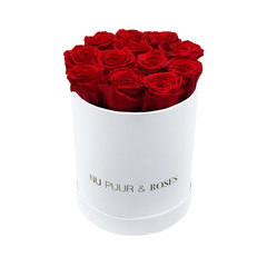 Small - Red Endless Roses - White Box
