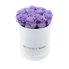 Small - Lilac Endless Roses - White Box