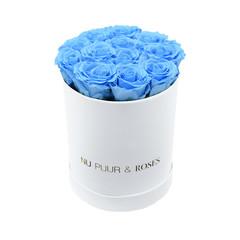 Small - Blue Endless Roses - White Box