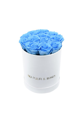 Small - Blue Endless Roses - White Box